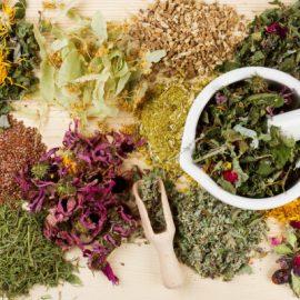 الاعشاب والنباتات